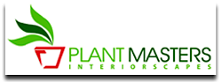 Indoor Plant Care